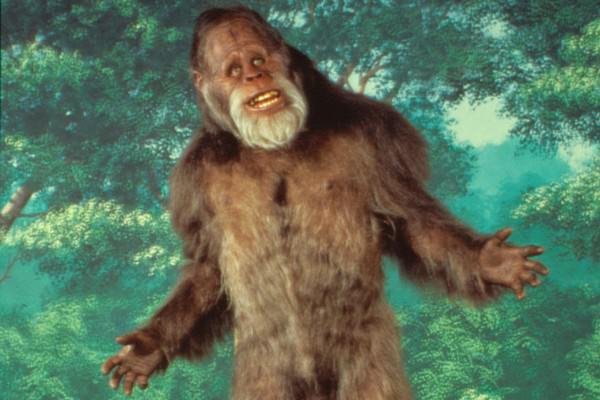 Bigfoot Savage