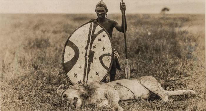 Maasai Lion Hunt With Spears