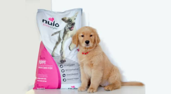 Top 10 Essential Puppy Products Every Dog Owner Should Have