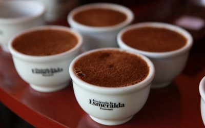 Hacienda La Esmeralda Coffee