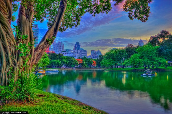 Lumpini Park Bangkok Thailand at Lake Before Sunrise
