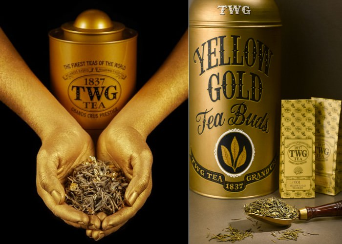 Yellow Gold Tea Buds