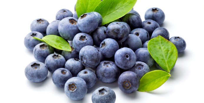 Blueberries foods for memory