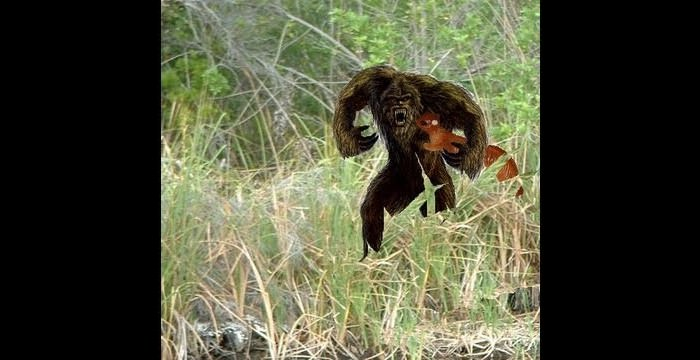 Skunk Ape Scariest Monsters