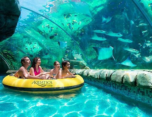 Aquatica,Orlando, Florida