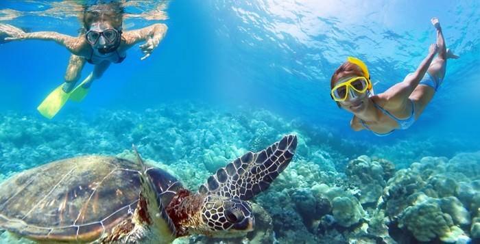 Turtle Beach in the US Virgin Islands