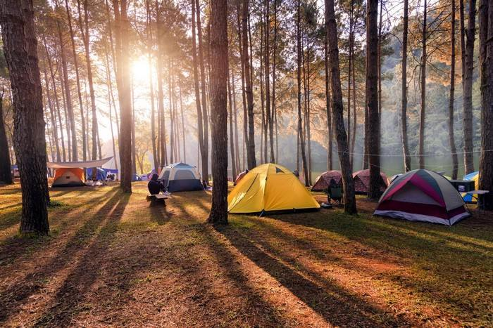 Camping must do experiences