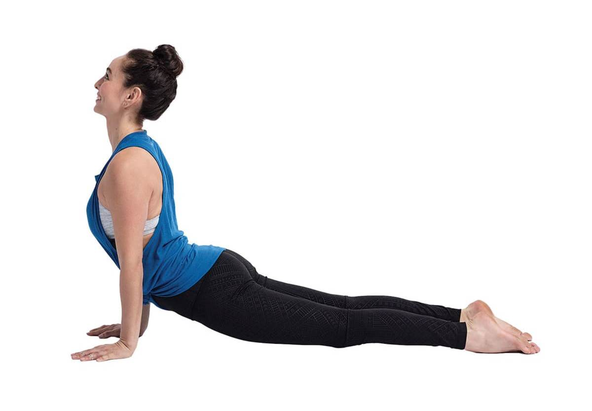 Upward Facing Dog Yoga
