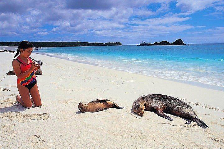 Ilhas Galápagos Ecuador
