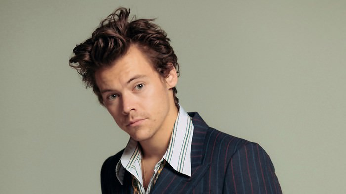 Harry Styles Celebrities with Stage Fright