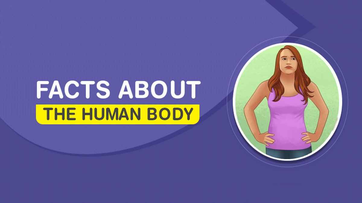 Disturbing Facts About The Human Body